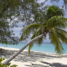 Beach in Grand Cayman, Cayman Islands - Hedge Funds